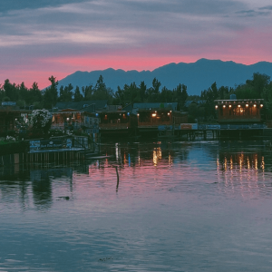 Read more about the article Why you should visit Kashmir, there is the top reason